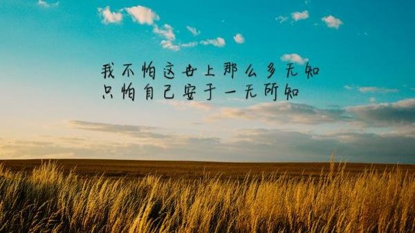 人生感悟的句子—领悟人生的经典句子