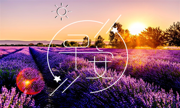 12月早安心语正能量 早安心语大全2021