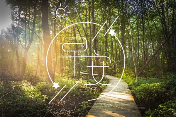 早上好暖心的句子 早安祝福语最温馨的话