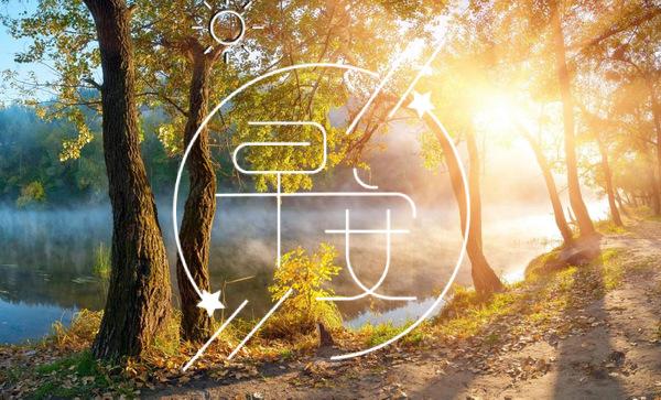 早晨充满正能量的句子 一句话精致早安